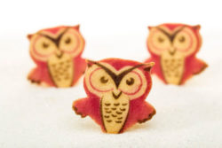 shortbread-angry-owls